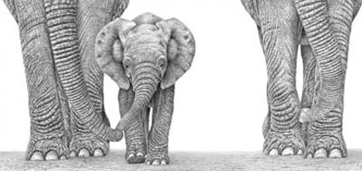 Baby Makes Three by Peter Hildick