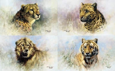 Big Cats Portfolio (Set Of 4)