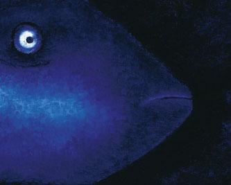Blue Loner