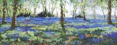 bluebell-heaven-14719