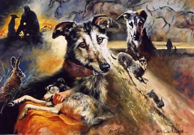 Bonny - Micks Lurcher by Mick Cawston