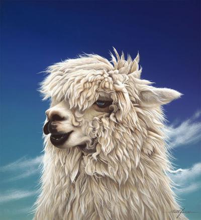 Britney - Alpaca by Paul James