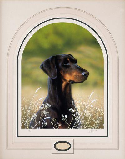 Classic Breed Dobermann by John Silver
