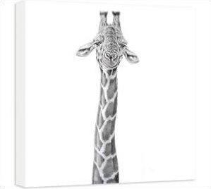 Dizzy Heights - Giraffe by Peter Hildick