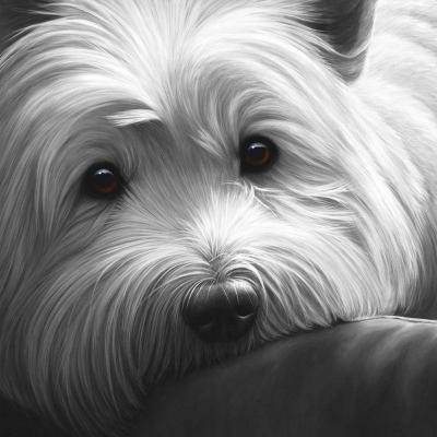 Dog Tired West Highland Terrier small