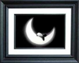 fly-me-the-moon-framed-15164