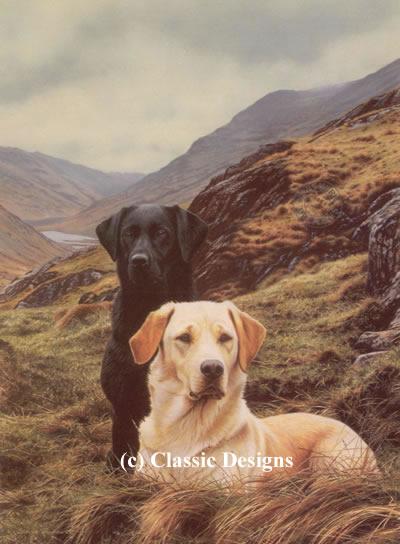Friends - Labradors