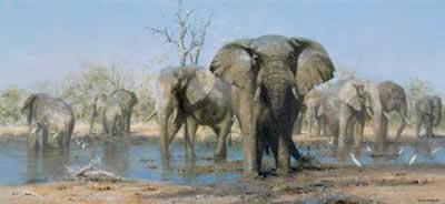 Happy Time - Elephants by David Shepherd