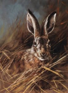 Head Of A Hare by Mick Cawston