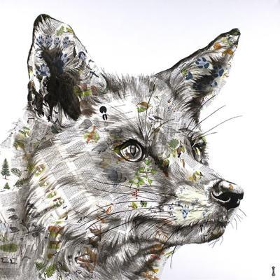 hunt-29746