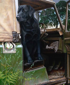 In The Driving Seat by Nigel Hemming
