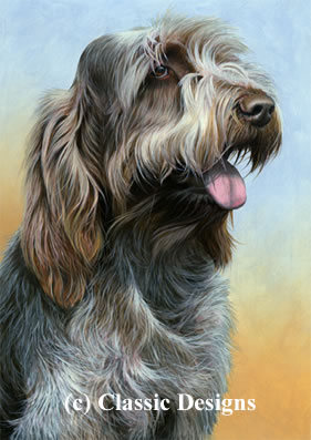 Just Dogs - Brown Roan Italian Spinone II