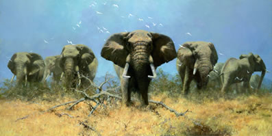 Just Elephants (75th Anniversary Print) by David Shepherd