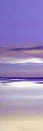 Lilac Fusion I