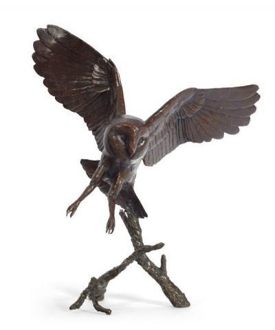 nocturne-owl-29577