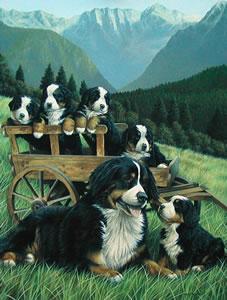 Nursery Slopes by Nigel Hemming