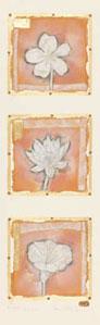 Petit Fleur 4,5,&6 (Portrait) by Kevin Blackham
