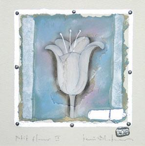 Petit Fleur 9 by Kevin Blackham
