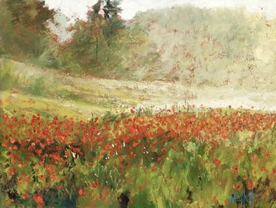poppyfield-at-dawn-11989