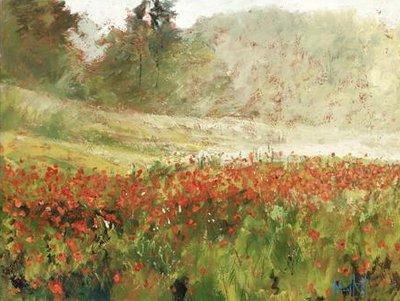 poppyfield-at-dawn-11989