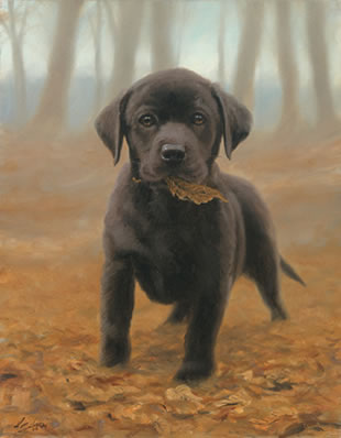 Puppy Leaves - Black Labrador Pup by John Silver