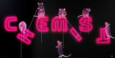 rats-fixing-the-chemist-29488