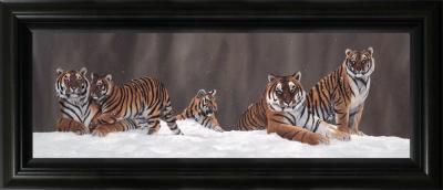 snow-patrol-17226