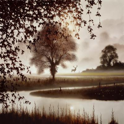 stillness-of-time-30532