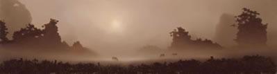 Sundown by John Waterhouse