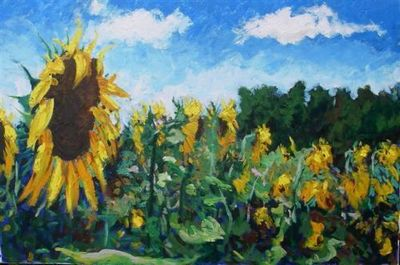 sunflowers-in-france-13042