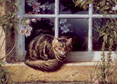 Sunshine & Roses - Cat