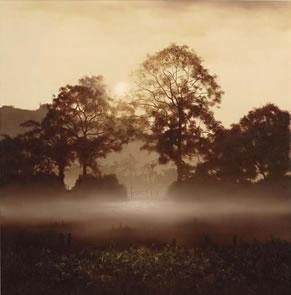 The Beauty Of Nature by John Waterhouse