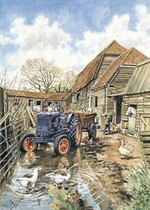The Farmyard (Twinstead Riding School) by Steven Binks