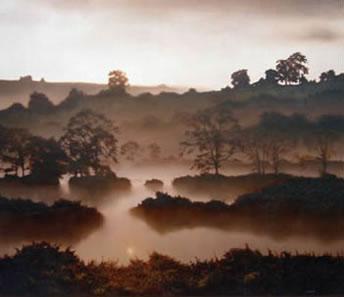The Flooded Field by John Waterhouse