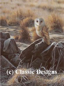 The Hunter - Barn Owl