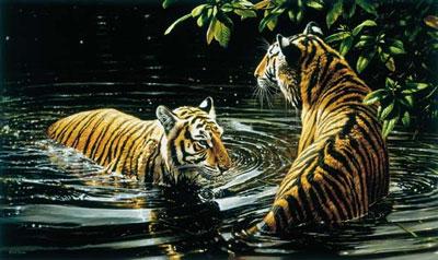 Tiger - Bengali Bathers