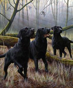 Tree Fellas by Nigel Hemming