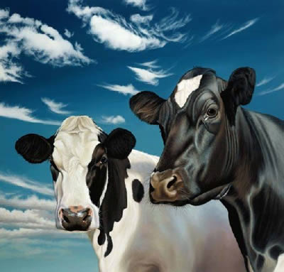 Trinny And Suzannah - Cows by Paul James