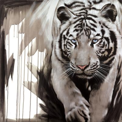 white-stripes-19392