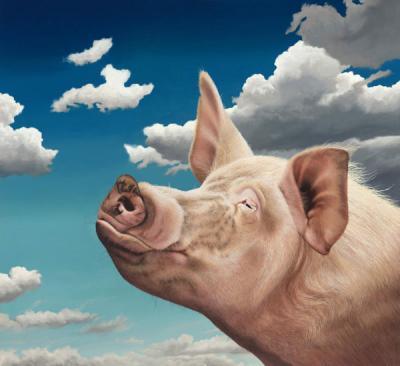 Winston - Pig by Paul James