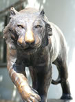 Stealth - Bengal Tiger - Pure Bronze by Gary Hodges