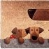 Little Rascals by Peter Adderley